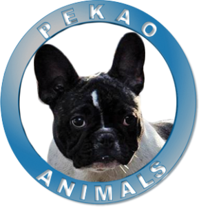 pekao animals blue